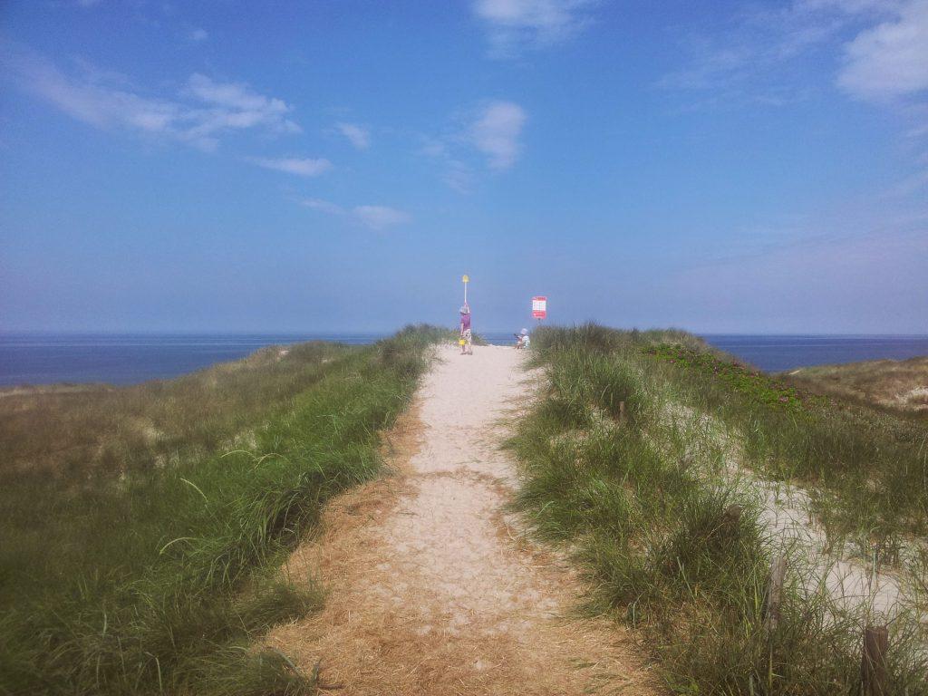 Wege auf den Dünen am Meer