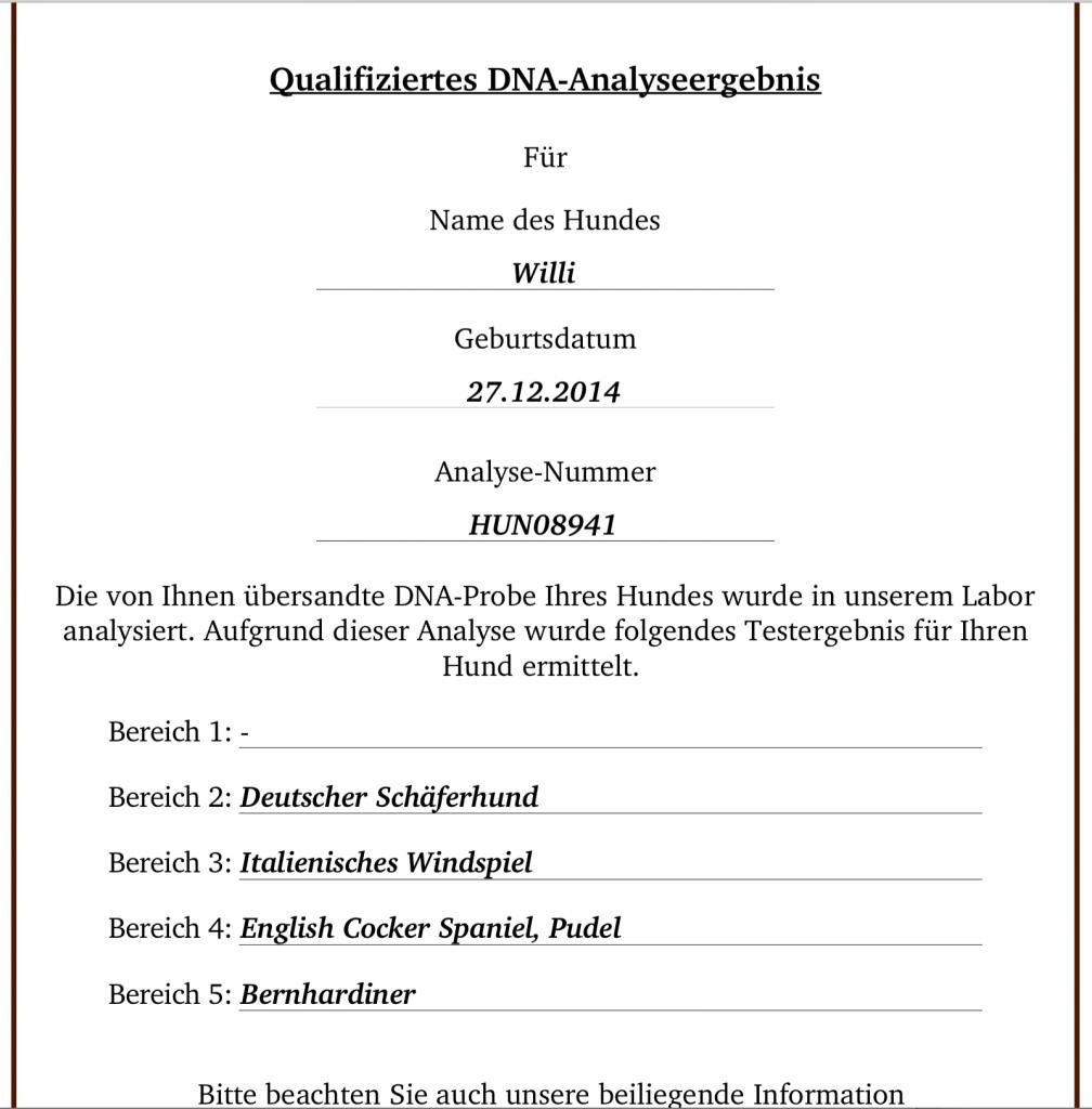 Hunde DNA Test Analyse