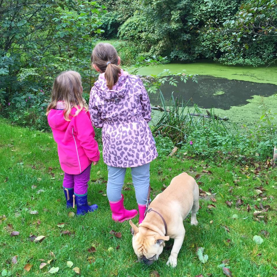 spazieren gehen mit Familienhund