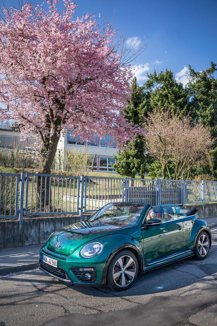 beetle cabrio bloggertour