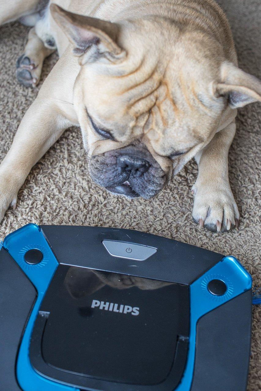 smarteasy pro philips hunde