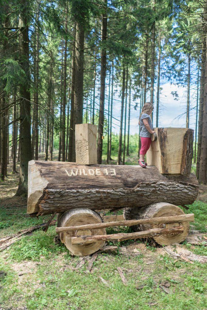 wilde 13 Wald bergisches Land wiedenest