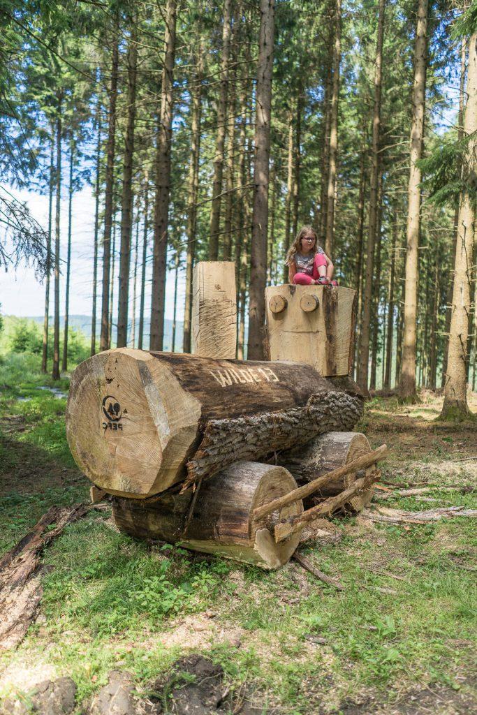 Bergneustadt Wald Holzlock bergisches Land