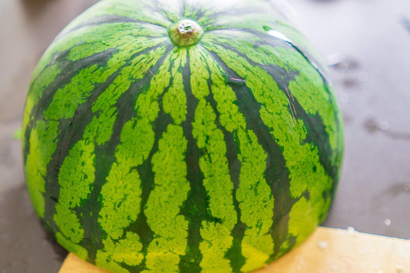 melonensalat welche Melone