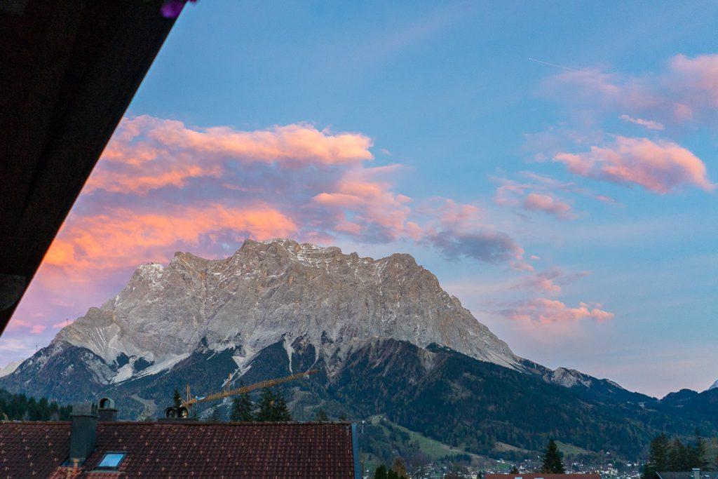 alpenrose lermoos Zugspitze