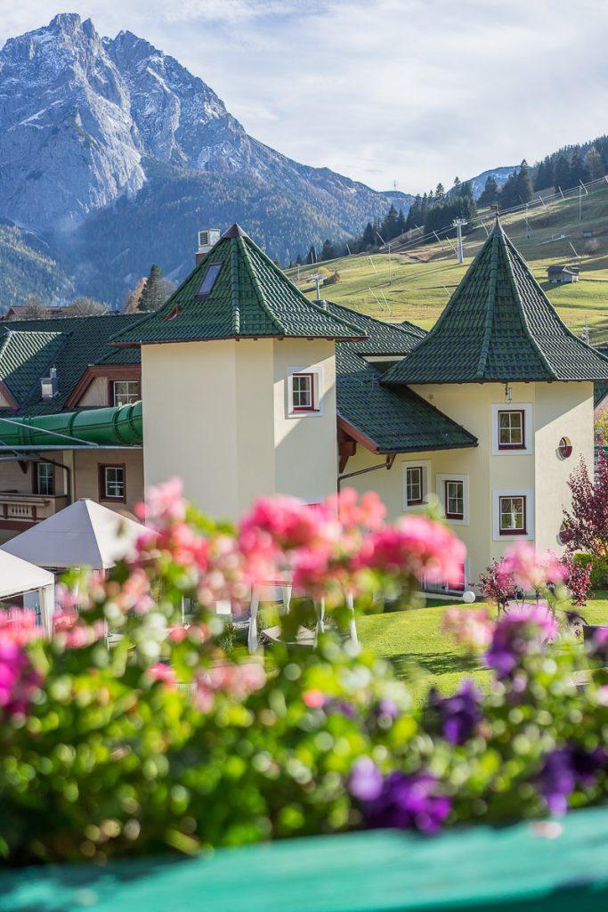 Zugspitze alpenrose lermoos