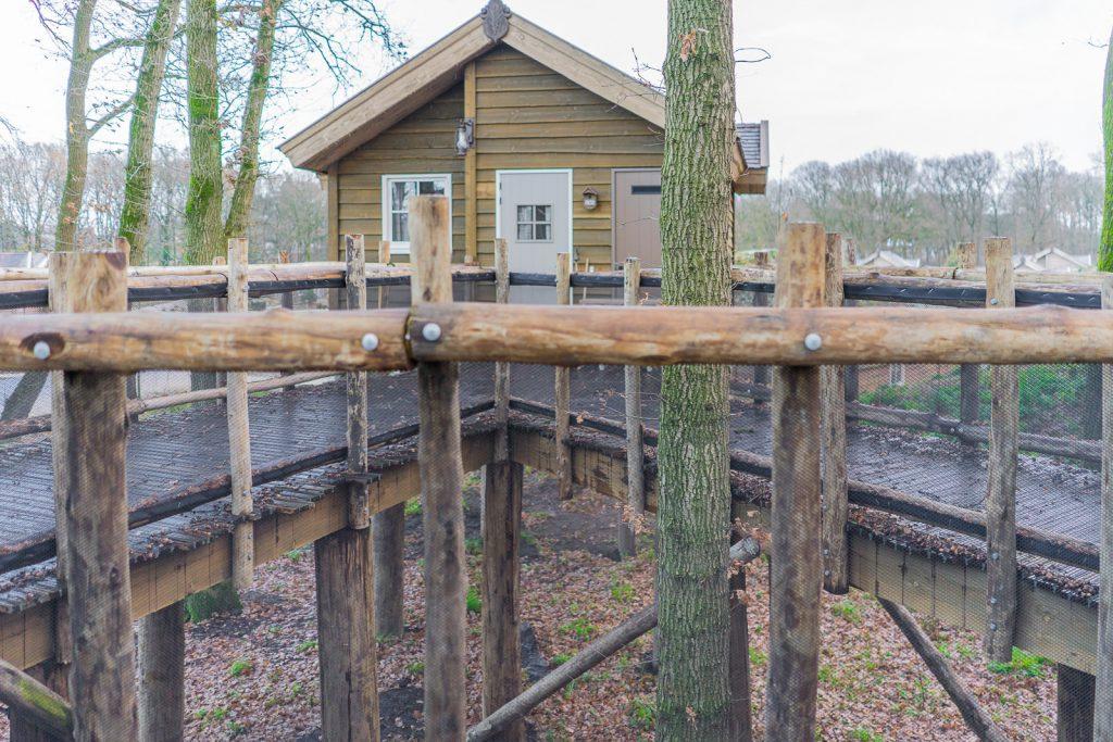 Baumhäuser loonsche Land