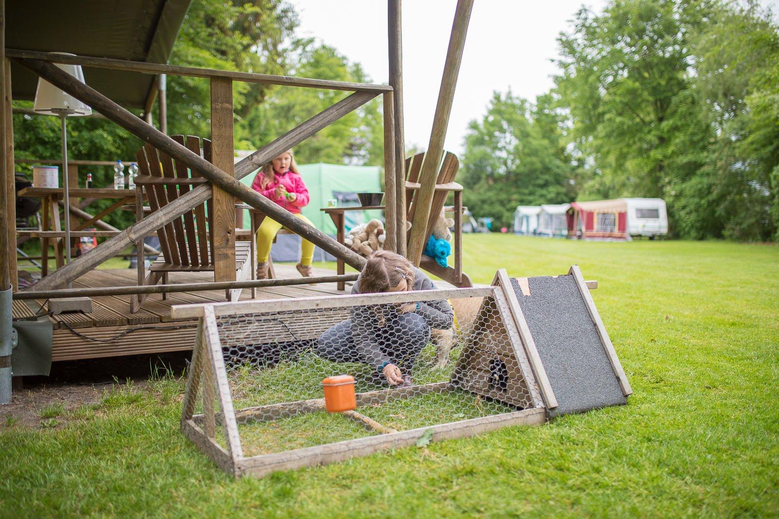 farmcamps kaninchen versorgen