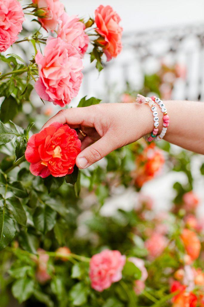 rote rosen blogger