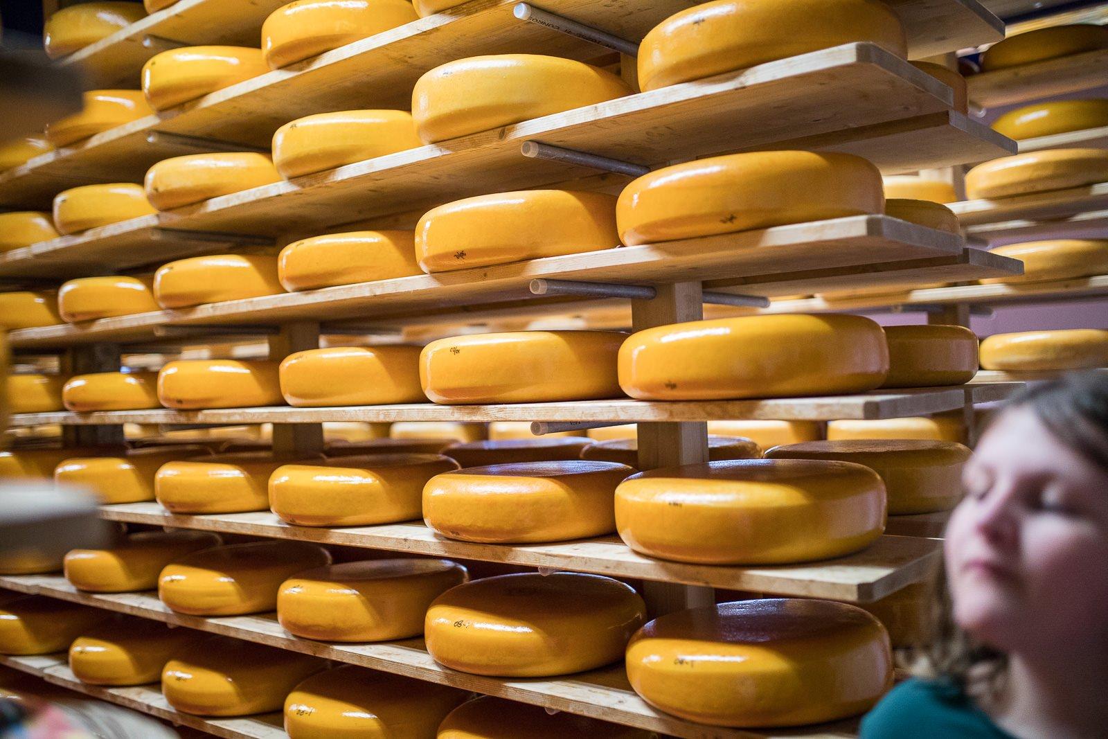 kaasboerderij weenink käse