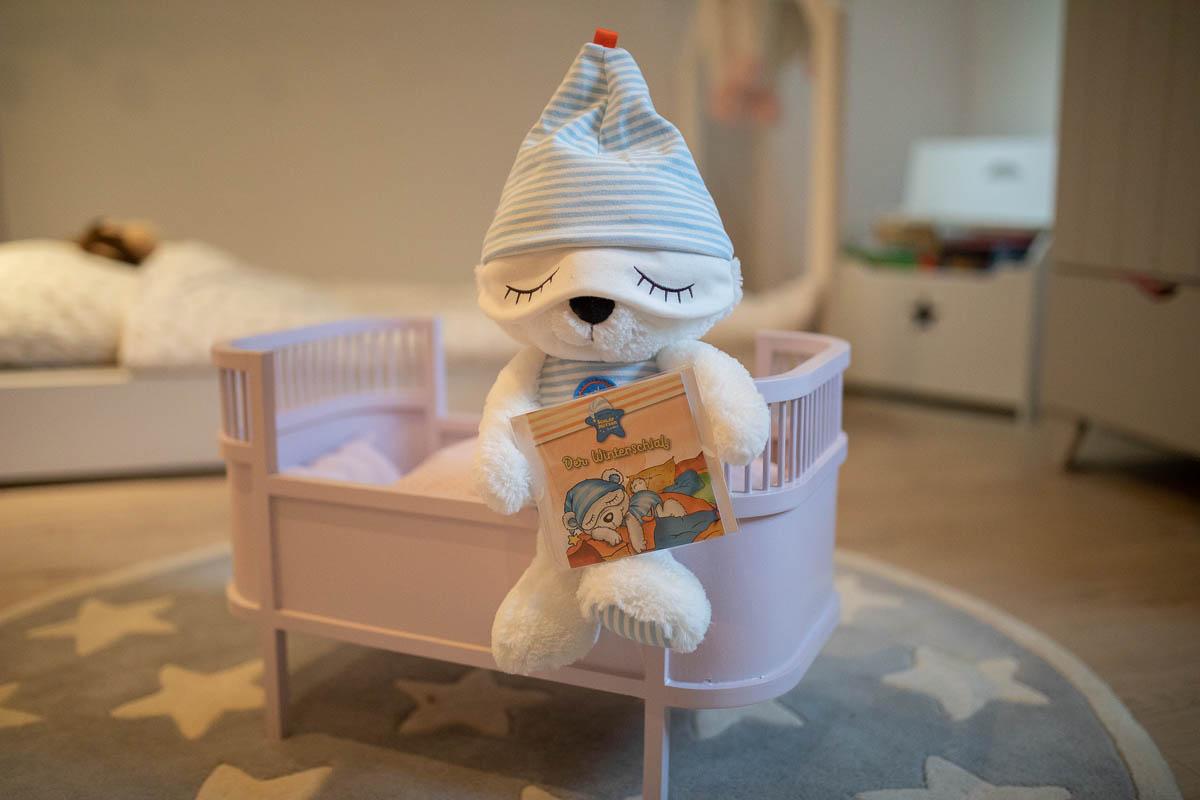 Eisbär Schlafmütze