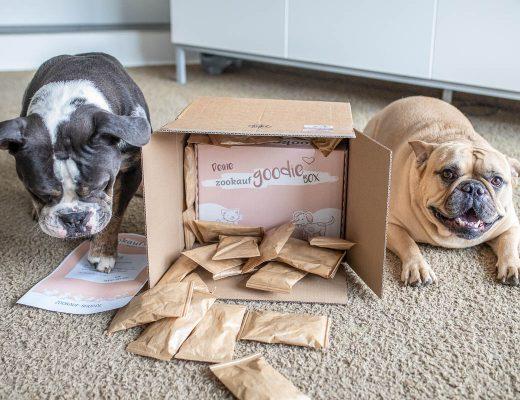 hundefutter online bestellen zookauf-shop